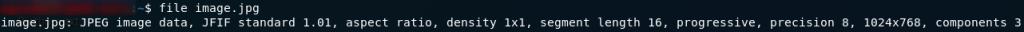 Regular JPEG file type