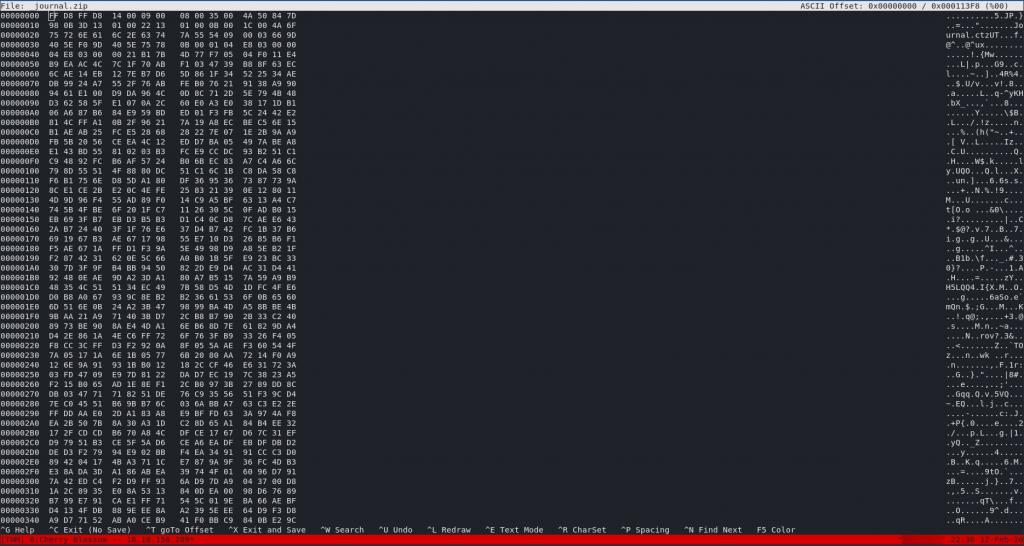 Hexeditor display for _journal.zip
