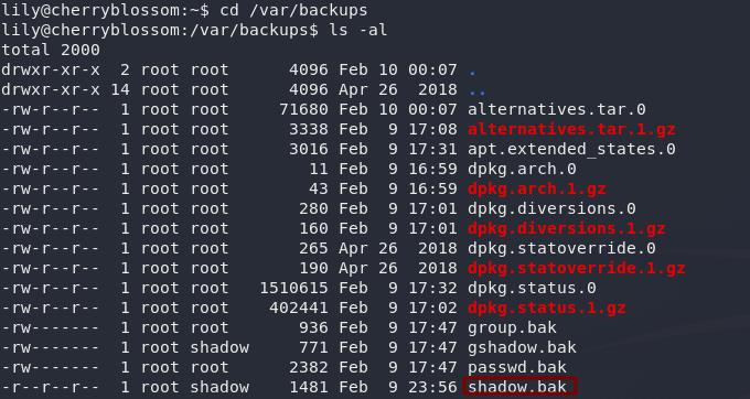 Backup of the shadow file in /var/backups