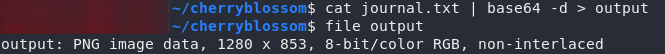 The real filetype for journal.txt is PNG