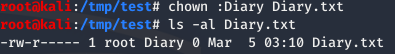 Changed ownership of Diary.txt to root:Diary