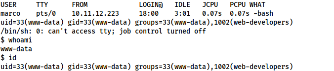 Successfully caught a reverse shell as www-data