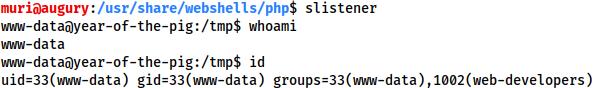 Receiving an interactive socat shell as www-data