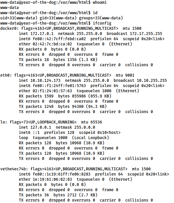 Screenshot of the reverse shell as www-data. Also shows the ifconfig command, demonstrating that docker is running