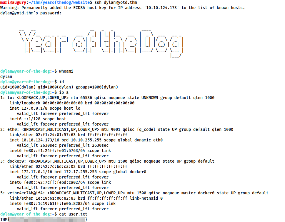 Screenshot of logging in as dylan over SSH and opening user.txt. Flag redacted.