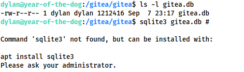 Screenshot showing the permissions for the gitea sqlite db, as well as sqlite3 not being intalled.