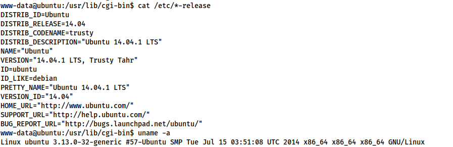 Screenshot showing the output of `cat /etc/*-release` and `uname -a`. Relevant information is displayed below.
